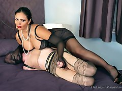 Hogtied Toy