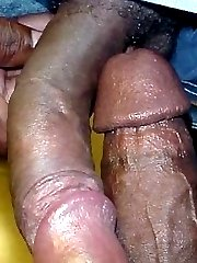 Big black cocks pictures