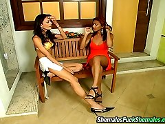 Luscious shemales revealing nasty way to spend their rest-time on the bench