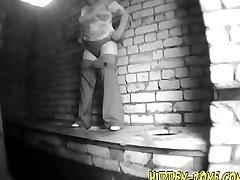 peeping in the toilet hzwc 637
