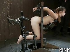 Fighting girls get punished and butt fucked