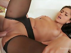 Pussies in Pantyhose - Gisell Mari