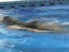 Girl Sex in the Pool