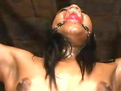 Bdsm Files 024  bdsm bondage slave femdom domination