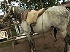 Orsay urinated in farm 2
