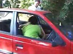 Doggingin το αυτοκίνητο και το δάσος