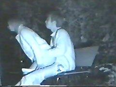 κρυφό το πραγματικό κατάσκοπος cam (νυχτερινή όραση) ιαπωνικό πάρκο