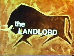 Vintage Land  N15