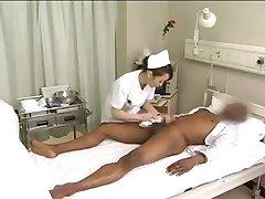 Āzijas medmāsas drenāžas melns gailis
