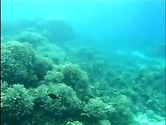 Aqua Bang-out 2 (Part 1 of 2)