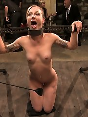 Catrina Cummings has never tried BDSM before. She is a total novice. She gets tied down and...