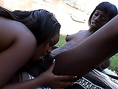 Black whores fucking each other's cunts