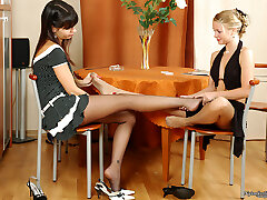 Lesbian girlfriends in lacy tights caressing pussies with their high stilettos