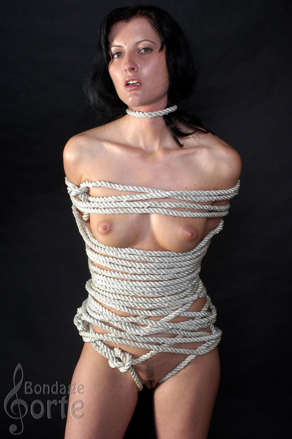 Forte porn bondage Bondage
