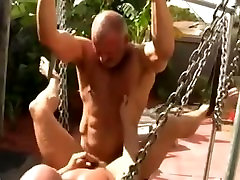 Matures in the Yard
