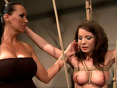 Skanky brunette cutie gets bandaged and suspender in anal pussy op lilly sex scene