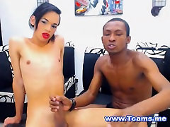 Two Shemale Wanking And Sucking Dick