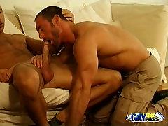 Hairy Bears Cock Sucking