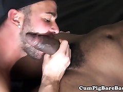 Black wolf doggystyle drilling indian grilsxxxvideos ass