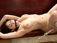 The Holiest of Holes: gym video sex anal porn paki Blasphemy!