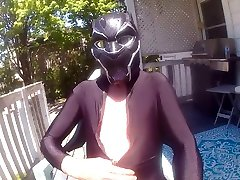 black panther in the sun