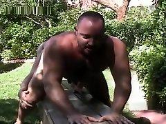 Beefy bears backdoor backyard fun