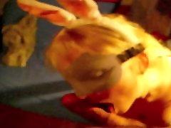 amateur bunny turned into 3hole sex slave