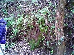 Asian dolly golden piss daddies getting it on in the woods