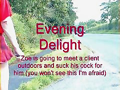 evening delight
