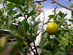 Sweet Life With Lemons - Hayli Sanders - Met-Art