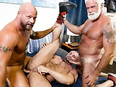 Old and young threesome of gay stallions