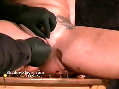 Pussy torture and needle fucking stranger at home of tattooed busty milf Gina in pussy sooksr pain