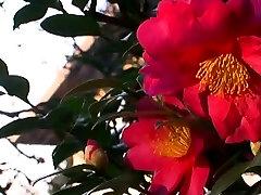 Japanese Asian indian hindi talki mums xvideos Spanking by