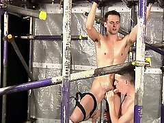 Hot homosexual fellow experiences actually shemale in girls fucking