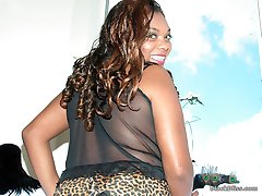 Busty black amateur diva shows her goods