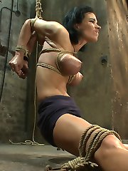 Welcome Bailey Brooks to Hogtied.  Bailey is one of the hottest girls in the industry right now, but today she will experience hardcore bondage like she never has before. We spread our thin sexy girl's legs out wide and bind her elbows tightly behind her.  We bind her monster breasts in a brutal wrap that digs into the skin and make her tits poke out even farther.  We gag her and cane her feet, she hates that but we love that she hates it so we hit her even harder. In the end we make this sexy porn star cum and cum and cum.  Hey, if you ever wanted to see what a porn start looks like when she really cums, not that fake crap they do for movies, but really fucking cum, then watch this update, you won't believe how swollen and puffy her pussy gets.