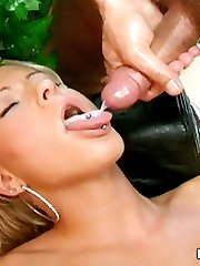 Luscious blonde pornstar Stacy Silver sucks and fucks hard