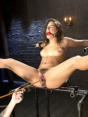 Abella has proven to be one of the most masochistic girls we shoot. She is willing to endure anything to be able to suffer in bondage. You can't hide or fake the fact that she lives for this type of treatment. The Pope even spreads her pussy wide with a speculum and uses the tip of a cane to tap on her cervix, which makes her cum.