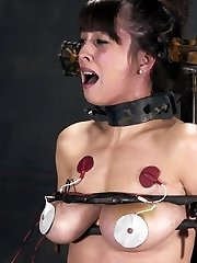 torture my tits electric breast torture
