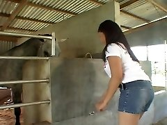 Riding Asian cock in the stables