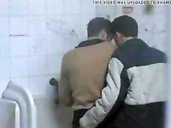 Cruising in Public Toilet