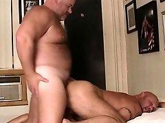 two hot bears