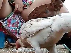 חובה לצפות דסי bhabi להאכיל תרנגולת