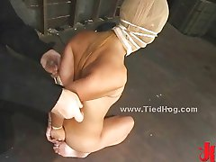 Slut is tied like a hog immobilized