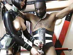 Mistress using her favorite slave