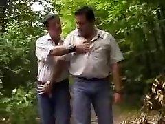 Gordito de los osos en el bosque