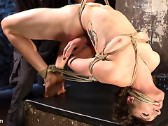 Lilith is new and learning what she likes and dislikes. She wants to be pushed to see what her...