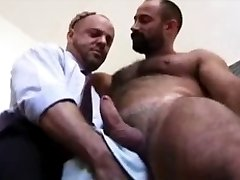 Corporate bears love anal sex