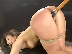Abella worships The Pope and her every desire is to submit to him in bondage. She always wants...