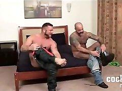 Charlie Harding: Bear Bottomed
